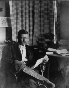 Theodore Roosevelt circa 1903.  Photo courtesy Library of Congress.